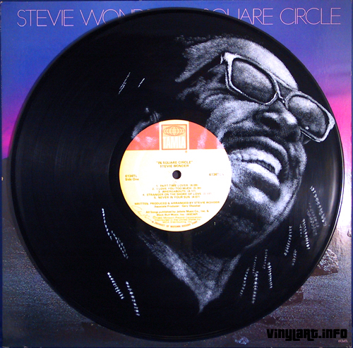 Vinylart Stevie Wonder
